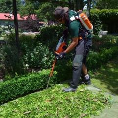 Espaces verts antonio le jardinier for Forfait tonte pelouse